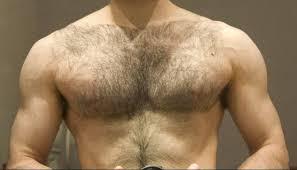 Does Body Building Prevent Body Hair Growth Trimbeast